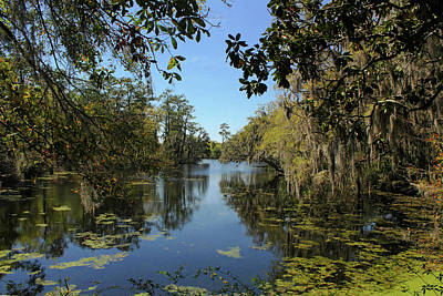 Photograph - Swamp Water Sundays by Jessica Brawley