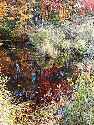 Photograph - Swamp Whimsey by Expressionistart studio Priscilla Batzell