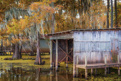 Photograph - Swampy Dock  by Sheena LeAnn