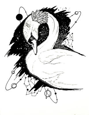 Drawing - Swan Among The Stars by Kenal Louis