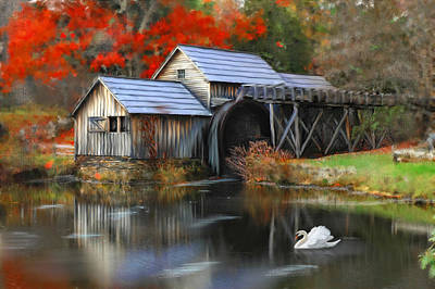 Swan At Mabry Mill Art Print by Mary Timman