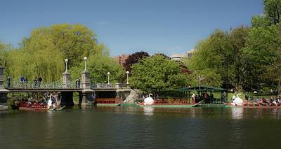 Photograph - Swan Boats In The Public Garden Boston Ma by Michael Saunders