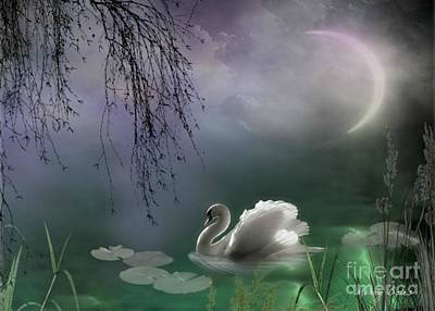 Mixed Media - Swan By Moonlight by Morag Bates