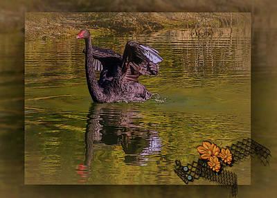 Photograph - Swan Dance by Leticia Latocki