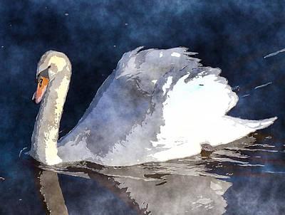 Swan Digital Art - Swan by David G Paul