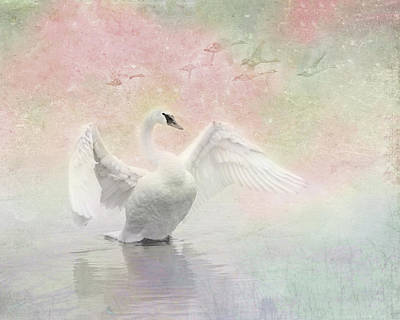 Photograph - Swan Dream - Display Spring Pastel Colors by Patti Deters