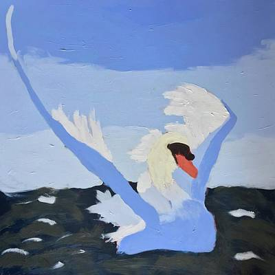 Painting - Swan by Donald J Ryker III