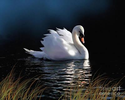 Whistler Digital Art - Swan Elegance by Robert Foster