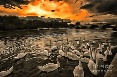 Swan Gloaming Kingston U K Art Print