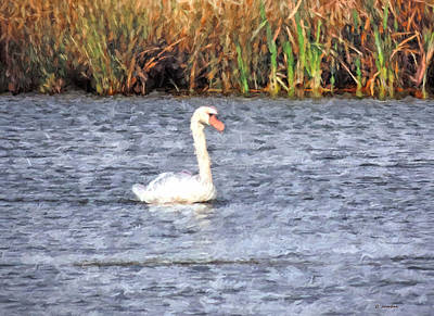 Painting - Swan I by Cathy Jourdan