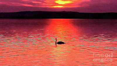 Painting - Swan In The Sunset Painting by Odon Czintos
