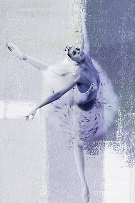 Swan Lake 01 Art Print