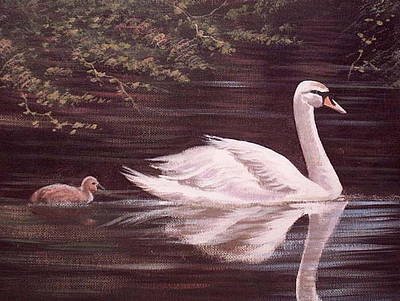 Swan Lake Art Print by Cathal O malley