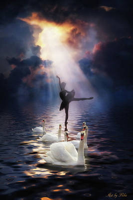 Digital Art - Swan Lake by Lilia D