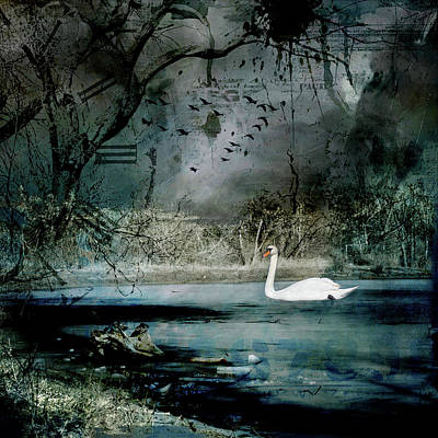 Photograph - Swan Lake by Marilyn Wilson