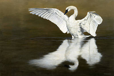 Painting - Swan Lake by Peter Eades