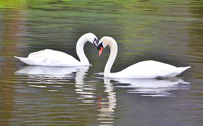Photograph - Swan Love by Diane Alexander