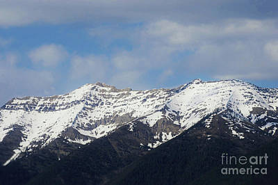 Photograph - Swan Mountain Range by Janie Johnson