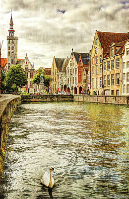 Photograph - Swan On A Bruges Canal - Vintage by Weston Westmoreland