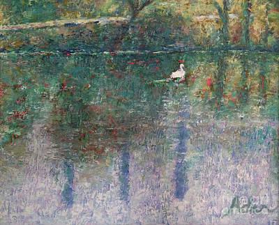 Swan On Town Lake - Now Lady Bird Lake Original
