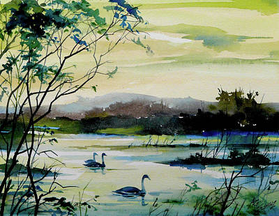 Swan Pond Art Print by Art Scholz