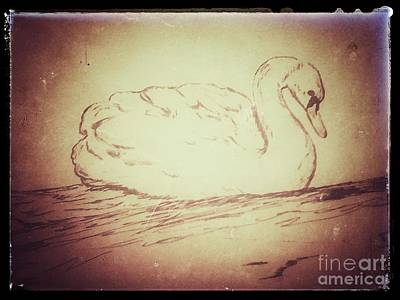 Digital Art - Swan Song by Ginny Youngblood