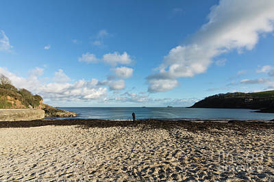 Photograph - Swanpool Beach Cornwall by Terri Waters