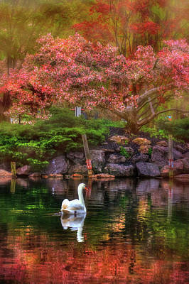 Photograph - Swans In The Boston Public Garden by Joann Vitali
