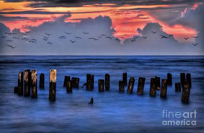 Photograph - Swarm At Sunrise by Dan Carmichael