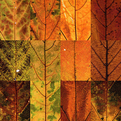 Swatches - Autumn Leaves Inspired By Gerhard Richter Art Print