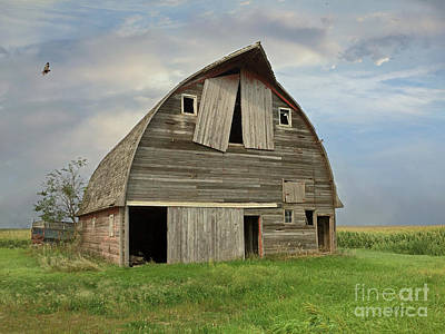 Photograph - Swea City Barn And Grain Wagon by Kathy M Krause