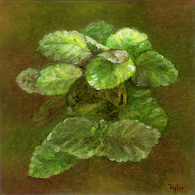 Painting - Swedish Ivy by FT McKinstry