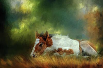 Dipper Digital Art - Sweet Boy by Kimberly Stevens