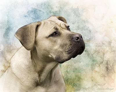 Sweet Cane Corso, Italian Mastiff Dog Portrait Art Print