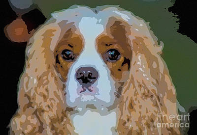 Photograph - Sweet Cavalier Face by Dale Powell