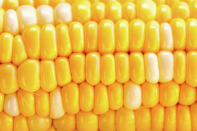 Photograph - Sweet Corn by Steven Green