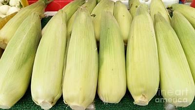 Photograph - Sweet Corns by Mudiama Kammoh