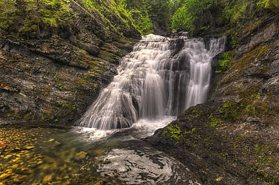 Tree Photograph - Sweet Creek Falls by Mark Kiver