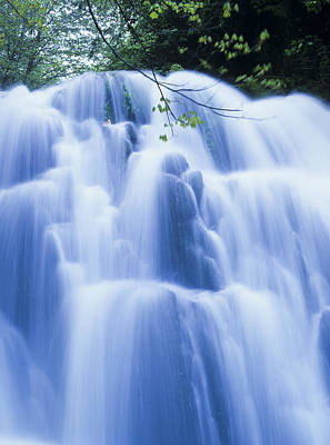 Photograph - Sweet Creek Falls by Robert Potts