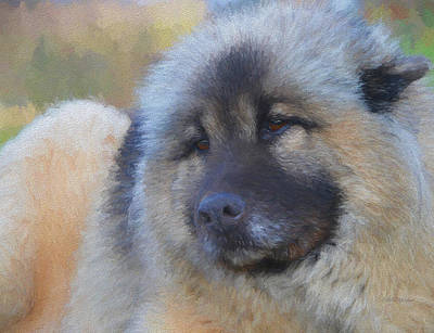Painting - Sweet Face Of A Eurasier - Painting by Ericamaxine Price