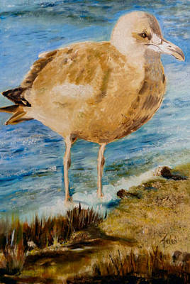 Painting - Sweet Gull Chick by Arlen Avernian Thorensen
