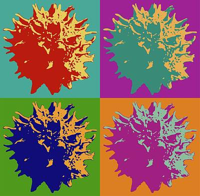 Digital Art - Sweet Gum Balls by Robert Grubbs