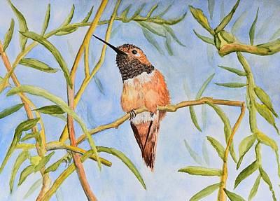 Rufous Hummingbird Painting - Sweet Hummingbird by Linda Brody