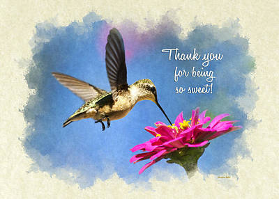 Photograph - Sweet Hummingbird Thank You Card by Christina Rollo