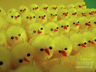 Sweet Little Chicks Waiting For Easter Art Print