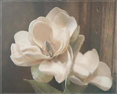 Mixed Media - Sweet Magnolia Blossom by Teresa Wilson