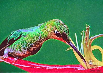 Digital Art - Sweet Nectar by Denise Railey