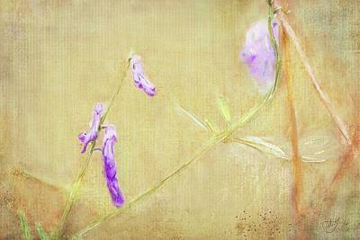 Painting - Sweet Pea Climbing by Mandy Tabatt