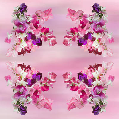Photograph - Sweet Peas Design by Jane McIlroy