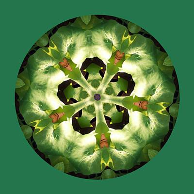 Potato Digital Art - Sweet Potato Mandala by Keri Renee